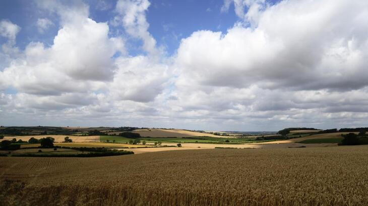 The Lincolnshire Wolds Countryside Service - New Website Launch